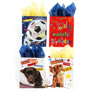 "FLOMO Large Boy's ""Enjoy Your Day"" Birthday Gift Bags"
