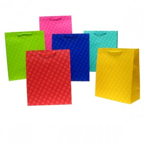 Large Geometric Tone Gift Bags - Assorted