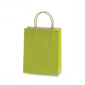 "Large Lime Green ""Color Savvy"" Gift Bags by FLOMO"