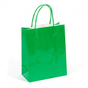 "Large Green ""Color Savvy"" Gift Bags by FLOMO"