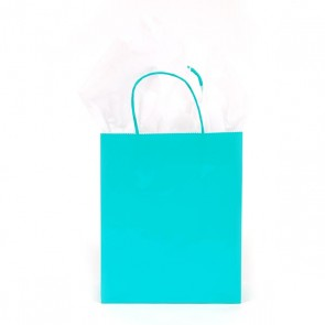 Euro Medium Turquoise Green Gift Bag