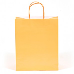 Euro Medium Neon Orange Gift Bag