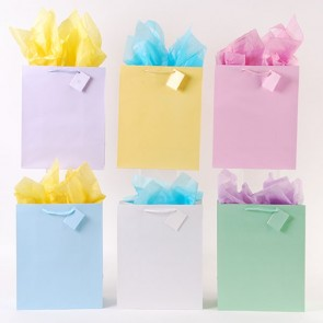 Large Soft Palette Pastel Color Gift Bags by FLOMO