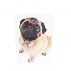 Full Body Pug Card