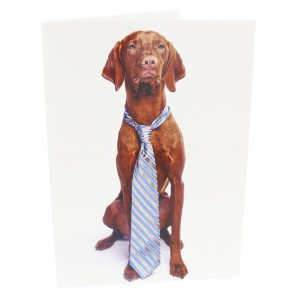 Vizsla Wearing Tie Card